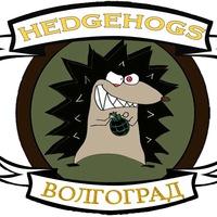 "Логотип С.К. ""HEDGEHOGS"" Волгоград"