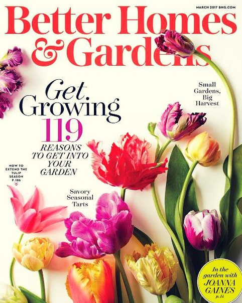 Better Homes and Gardens USA March 2017