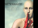 Meshuggah - Combustion (Ermz Remaster)