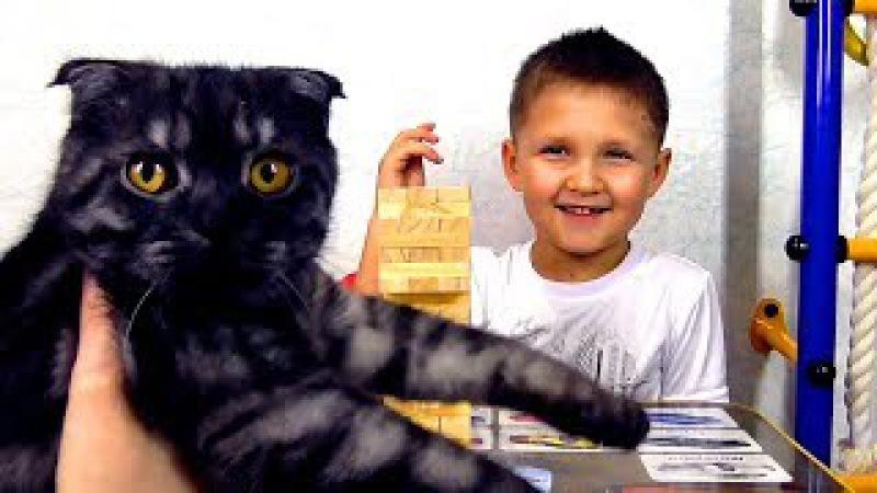 Кот Макс и Игра Башня Джумба. АНОНС КОНКУРСА! / The Cat Max and the Game The Jumba Tower
