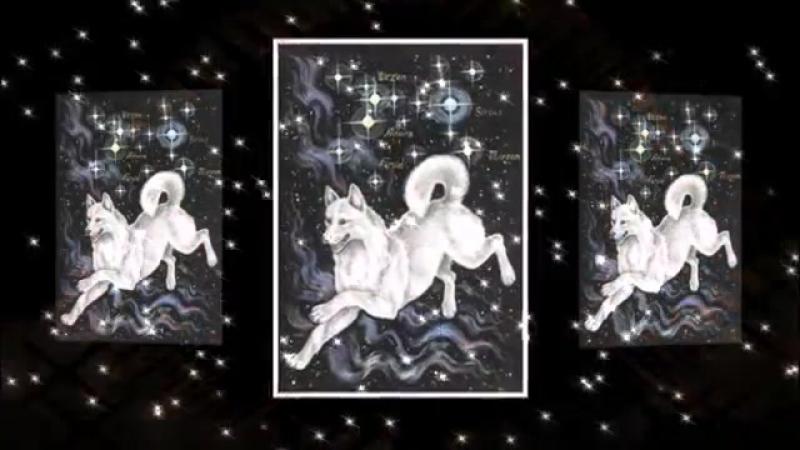 Созвездье гончих псов