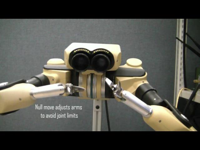 Taurus II Dexterous Telepresence Manipulation System, Model TMS2