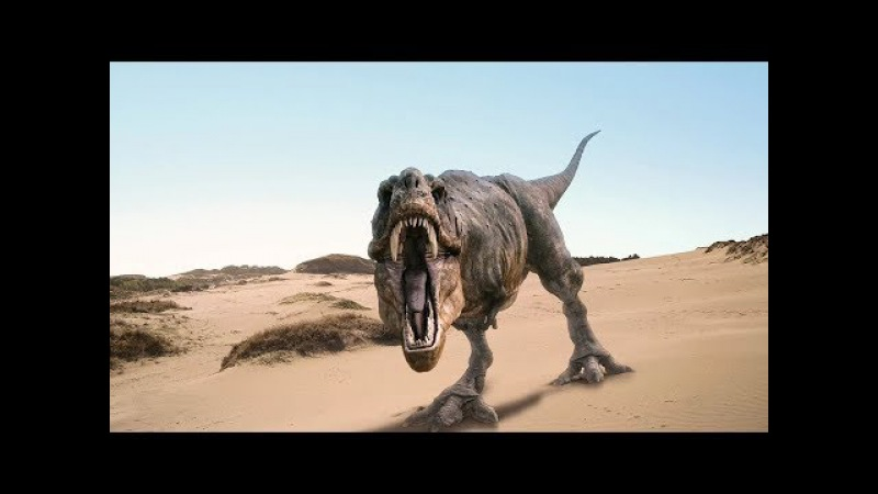 Dinosaur Rex discovered in Mexico.Динозавр Рекс обнаружен в Мексике.