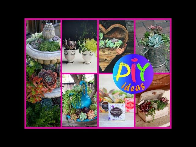 50 DIY Succulent Planter and Terrariums Ideas - DIY Pots Decoration