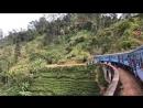 Прилетайте на Шри Ланку посмотреть нашу красивую дикую природу Если вас заинтересовал тур пишите или звоните мне 94726539424