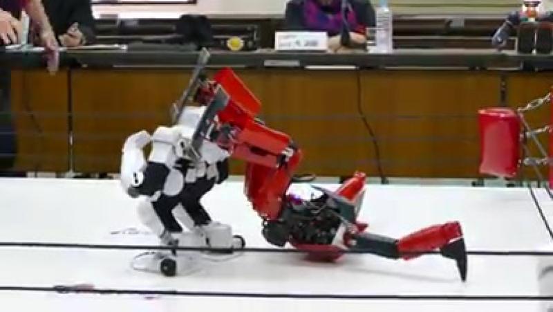 Luta de robô