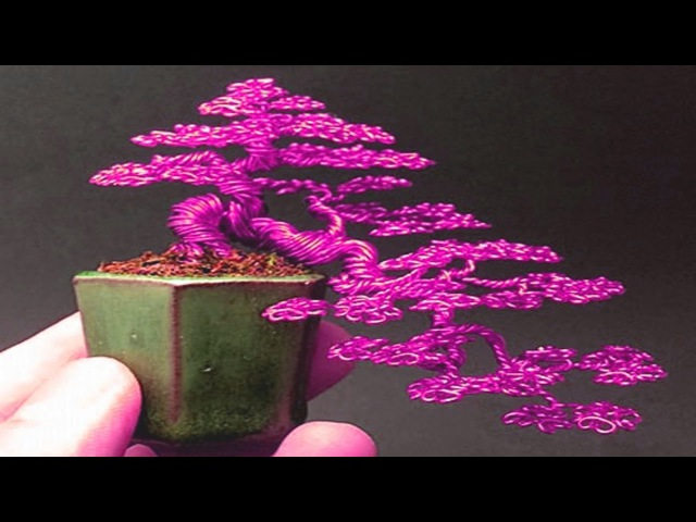 Bất ngờ với vẻ đẹp của bonsai làm từ dây kim loại