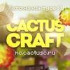CactusCraft | IP: The END