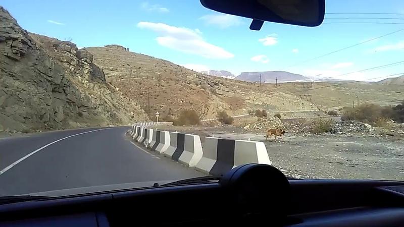 2 Дорога из Цумадинского р-на вдоль реки Андийское Койсу, ноябрь 2018 | туризм в Дагестане