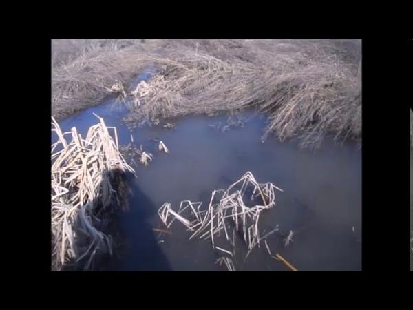 с Крона в Уфе текут ручьи мутной воды