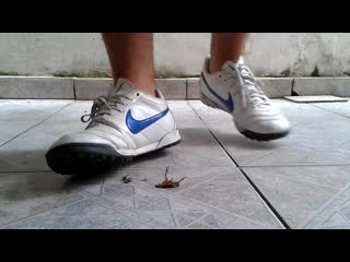 Crushing insignificant cockroach with nike cleats