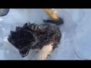 VIDEO-2020-11-20-12-31-