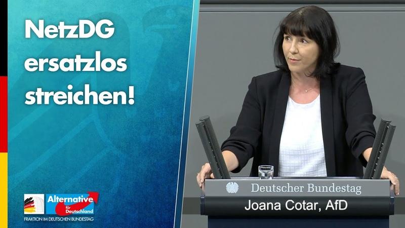 NetzDG ersatzlos streichen Joana Cotar AfD Fraktion im Bundestag