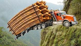 Dangerous Technology Fast Big Tree Felling Cutting Down Latest Turbo ChainSaw Skills Transportation