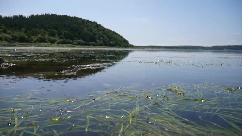Озеро изменчивое корсаковский район фото