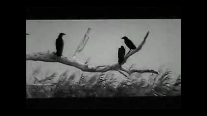 ЖЕНЩИНА ДЕМОН Onibaba Япония 1964