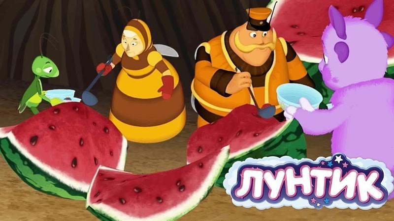 Лунтик | День арбуза 🍉🍉🍉 Сборник мультфильмов для детей