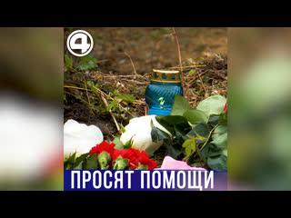 Родственники погибшей Ксении Каторгиной просят помощи