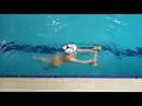 Спортивные фитнес-каникулы смены с обучением плаванию в Болгарии в детском лагере Начало 2019