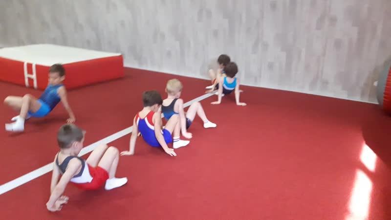 спортивная гимнастика для детей 89032287122