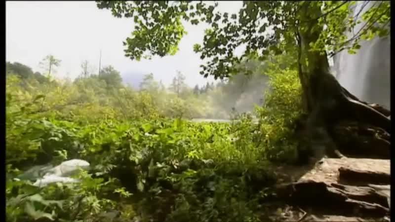 Водопады. Токката и фуга ре минор.