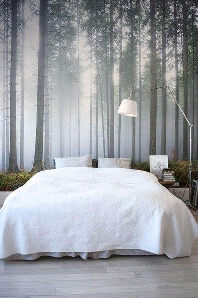Какой вариант фотообоев Вы бы выбрали для своей спальни?