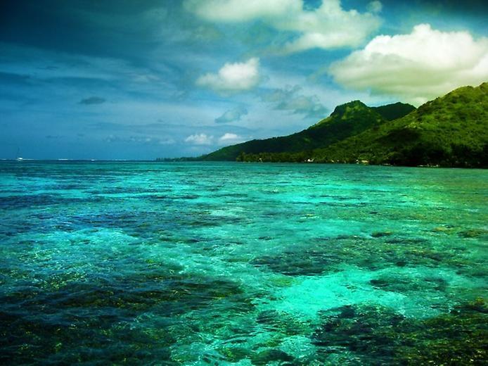 Остров Муреа во Французской Полинезии, изображение №4