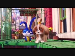 Тайная жизнь домашних животных 2 Трейлер #4 (англ)