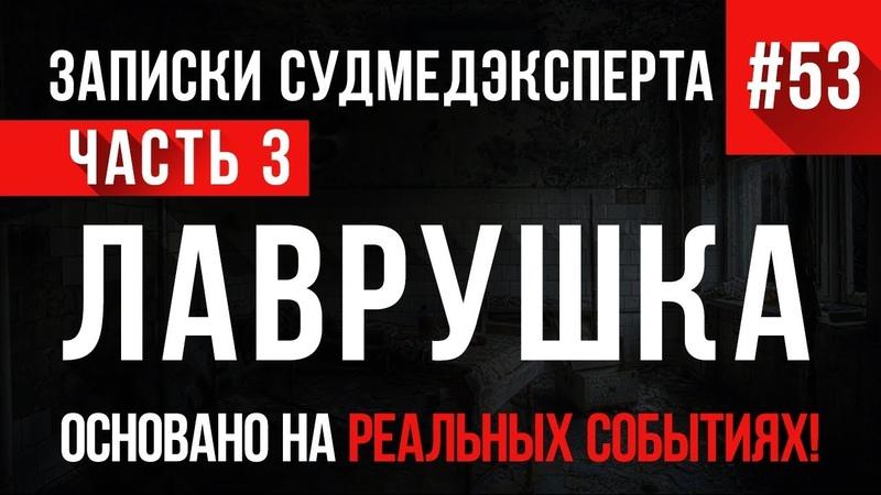 «Лаврушка» (часть 3) Записки Судмедэксперта 53 18