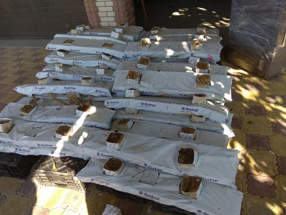 Полиции удалось обнаружить масштабные нарколаборатории в Рубежном и Лисичанске (фото)