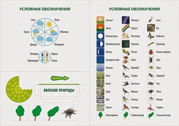 Условные обозначения для календаря природы в детском саду в картинках