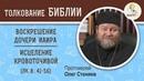 Воскрешение дочери Иаира и исцеление кровоточивой женщины Воскресное чтение Протоиерей Олег Стеняев