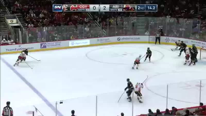 'GOTTA SEE IT- Line Brawl Erupts Between Flames And Coyotes, Goalies Included.mp4