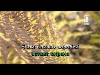 """Караоке для детей - Песенка охраны (Из м/ф """"Бременские музыканты"""")"""