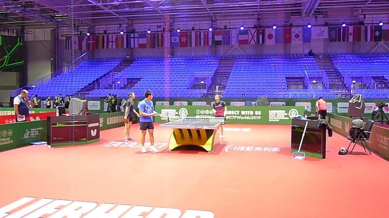 FENG Tianwei and ZHANG Mo on the 2019 ITTF WTTC