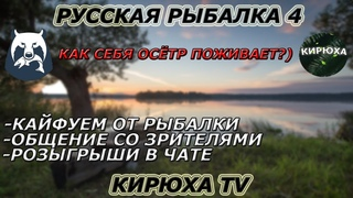 🔴 Русская рыбалка 4 🐟 ● Как себя осётр поживает?) ● Розыгрыши 🔴
