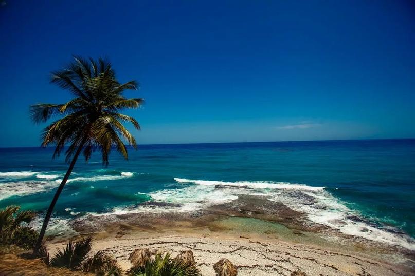 На какие экскурсии обратить внимание в Доминикане?, изображение №4
