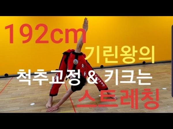 자세교정과 키성장을 동시에 기린왕의 척추건강53412;크는 스트레칭!!