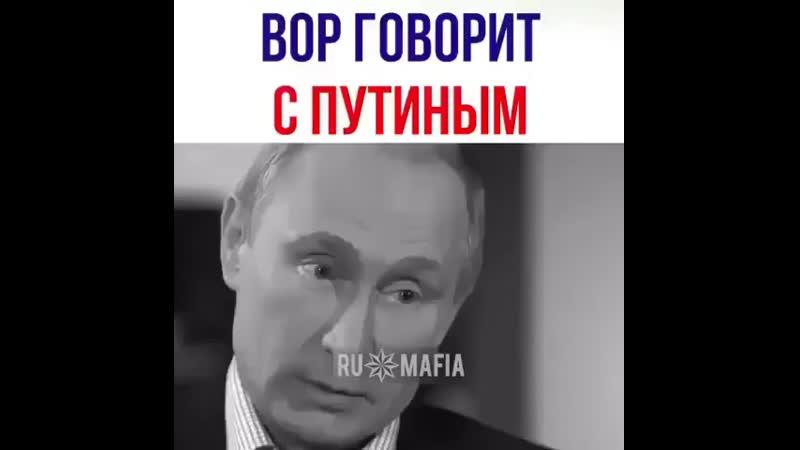 _russ_mafiaInstaUtility_-00_Bw1poo1lpbc_11-58748652_2064544793594344_8671494036676149248_n.mp4