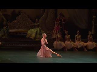 Программа «Царская ложа» о премьере балета «Баядерка»
