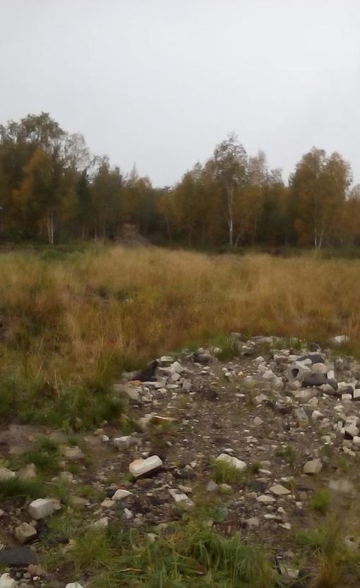 купить земельный участок СОТ Никольское