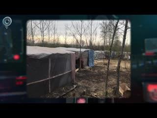 Полиция накрыла лагерь нелегальных мигрантов в лесу у города Обь