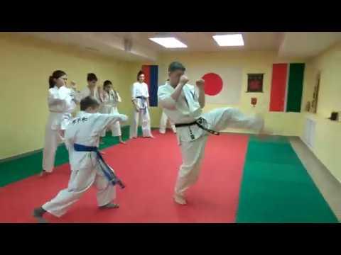 Shikon Karate elbow class Kazan Dojo