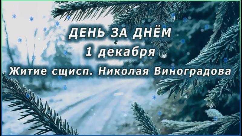🔴 ДЕНЬ ЗА ДНЁМ 1 декабря Житие сщисп Николая Виноградова