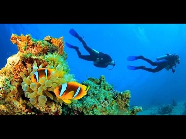 Удивительные мальдивы. Мальдивские острова.Maldives.