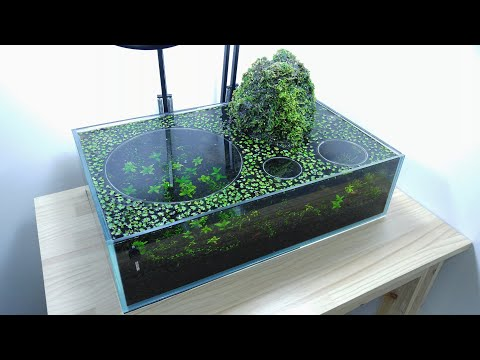 2 Volcano Filter Betta Aquarium - YES filter, NO CO2, NO Ferts 7.6 Gallon Tank