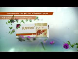 21_karsil_probka_toksich_1920_1080_hd_15 (1)