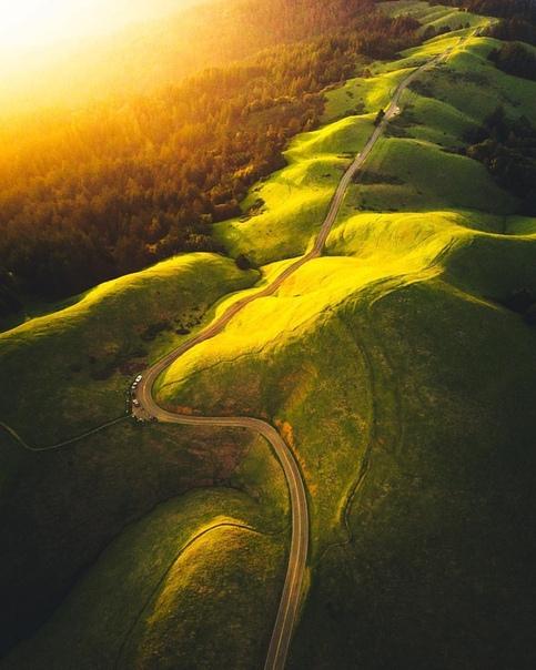 Калифорния, США Фото: Cody Mayer Photography