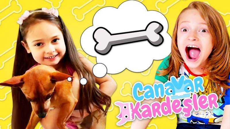 Eğlenceli videolar Canavar Kardeşler Köpek Panço oyunları