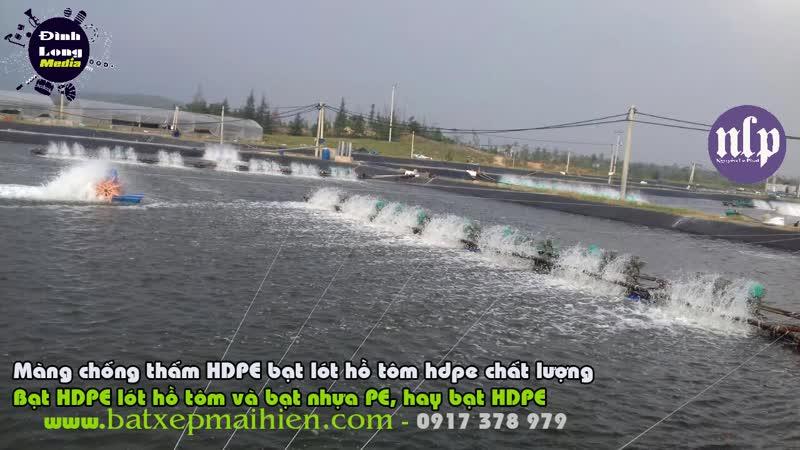 Cung Cấp Bạt Lót Hồ Chứa Nước Nuôi Tôm Cá Tại Phan Thiết Bình Thuận Bạt Nhựa Nuôi Tôm Bình Thuận